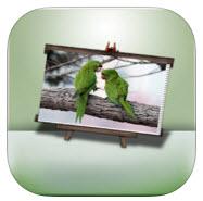 iProtect Album iPhone App