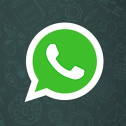 whatsapp windows application