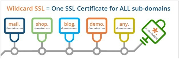 Wildcard SSL certificate features