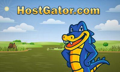 hostgator logo banner