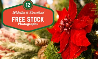 Free stock photographs christmas