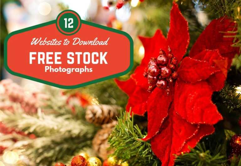 12 Websites to Download Free Stock Photos and Royalty Free Images for Commercial Use