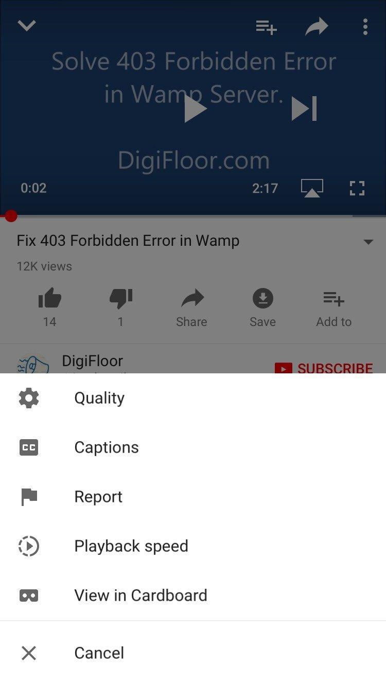 YouTube Playback setting on iPhone