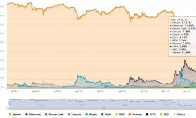 Cryptocurrency market capitalization share