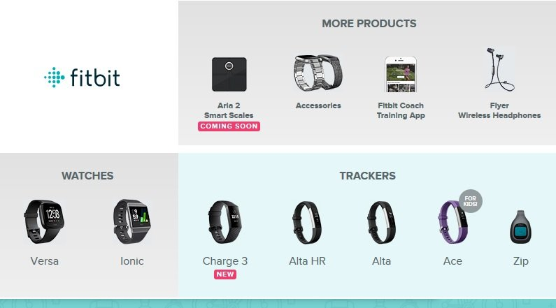 Fitbit fitness tracker