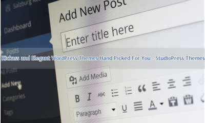 Kickass and Elegant WordPress Themes Hand Picked For You - StudioPress Themes