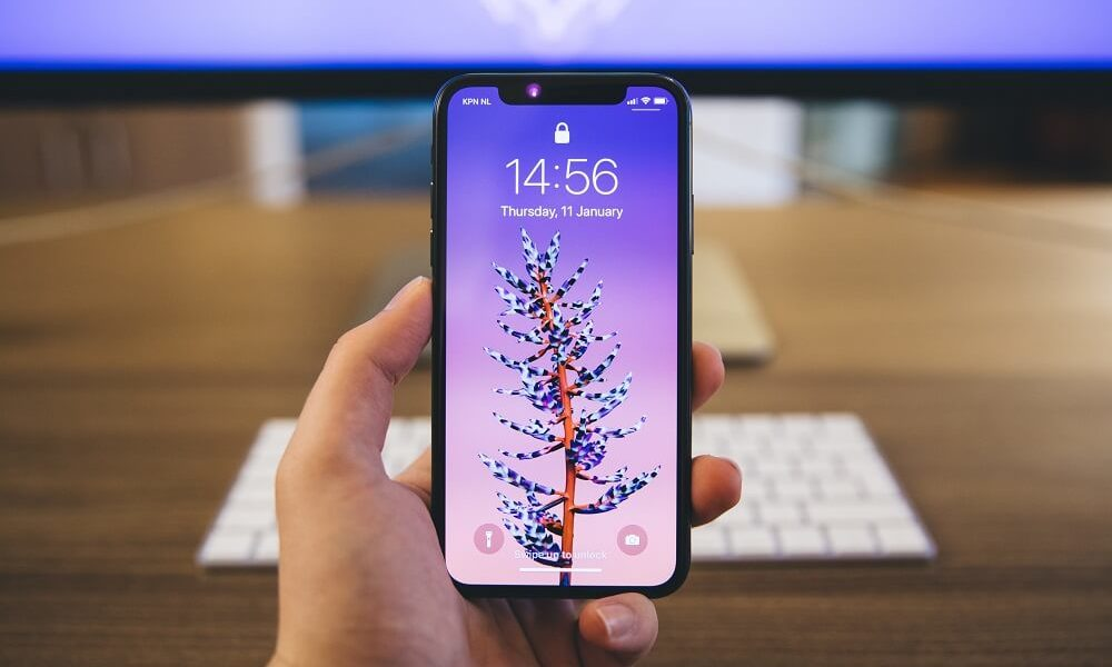 Temporary (Disable) Turn Off Face Recognition on iPhone X